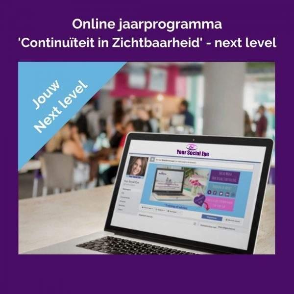 Online jaarprogramma Continuiteit in Zichtbaarheid Next level 1